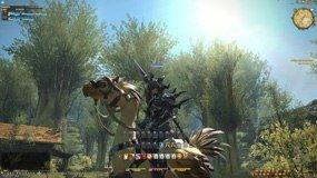 Final Fantasy XIV - A Realm Reborn Collector's Edition, Abbildung #04