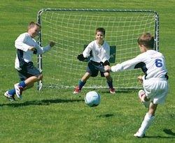 Fußballtor Trainer mit Torwand (Art.76920)