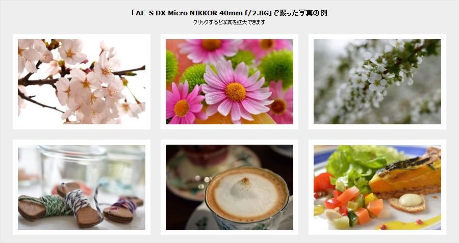 「AF-S DX Micro NIKKOR 40mm f/2.8G」で撮った写真の例
