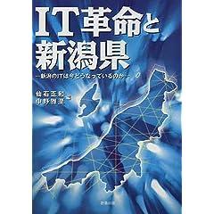 IT革命と新潟県—新潟のITは今どうなっているのか
