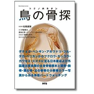 bone design series