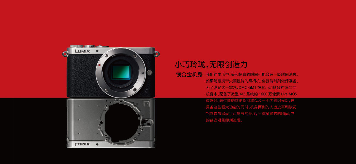 xp/vista/7/8) 标准配件 电池,充电器,usb连接线,肩带,cd-rom,ac电缆