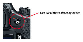 Improved layout with dedicated Live View/Movie shooting button