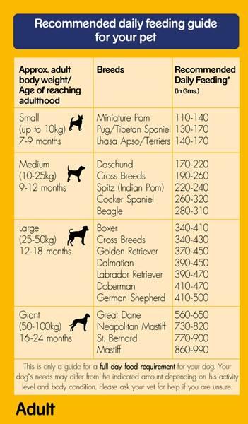 Pedigree Small Dog Food Feeding Chart