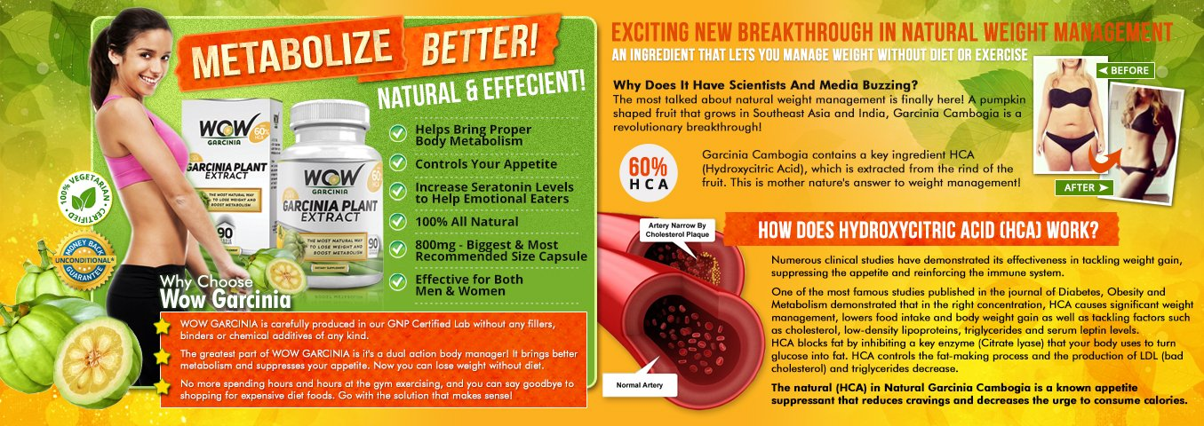 best fat burning enzymes