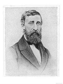 Henry David Thoreau - Giclee Poster Print