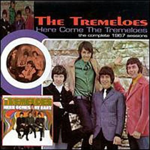 The Tremeloes - Here Come the Tremeloes - Zortam Music