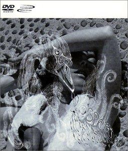 Bjork - Vespertine [Dvd-Audio] [DVD-AUDIO] - Zortam Music