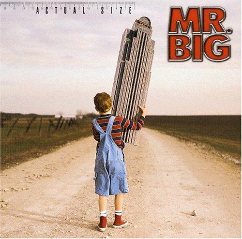 Mr. Big - Actual Size - Zortam Music