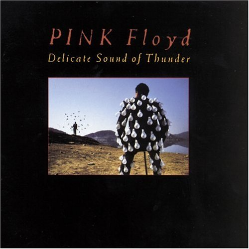 Pink Floyd - Delicate Sound of Thunder (Disk 1) - Zortam Music