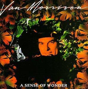 Van Morrison - A Sense of Wonder - Zortam Music